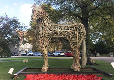 War Horse Project